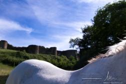 Tiffauges ext juin 150-3098