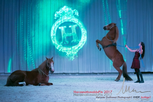 spectacle hdp 2017 72-13439