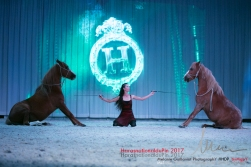 spectacle hdp 2017 72-13461