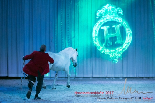 spectacle hdp 2017 72-13596