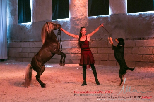 spectacle hdp 2017 72-13818