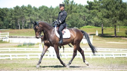 Dressage TVallette-5439