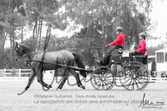 RBerrard Saumur-0821