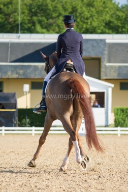 Reprise Dressage Beatriz Ferrer-Salat Delgado-7748