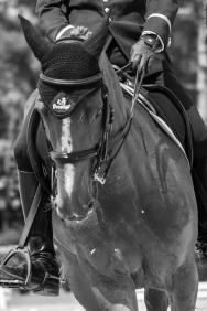 Thomas Bouquet Cadre Noir GN Saumur 2019-1559
