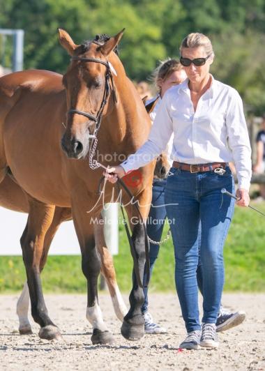 Foal 04 HDP régional 2020-049403