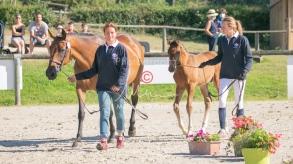Foal 06 HDP régional 2020-049470