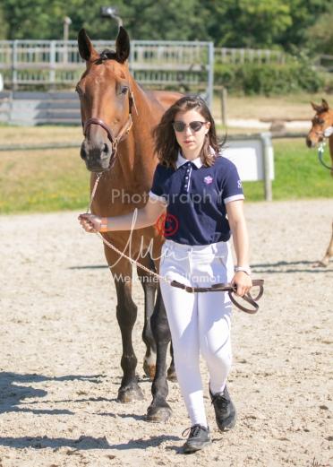 Foal 17 HDP régional 2020-130083
