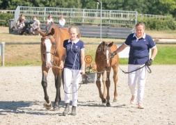 Foal 18 HDP régional 2020-180146