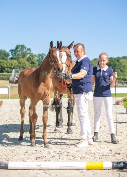Foal 18 HDP régional 2020-180174