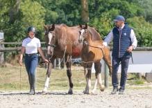 Foal 32 HDP Régional 2020-250713