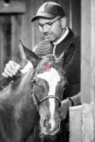 Foal Kalm Vertige d'Altaic-9732