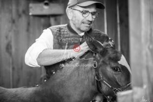 Foal Kalm Vertige d'Altaic-9733