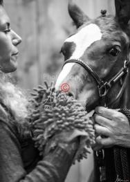 Foal Kalm Vertige d'Altaic-9750